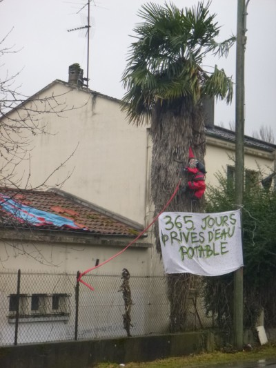 Le_Palmier_59_Avenue_du_Maréchal_Foch_Saint_Girons